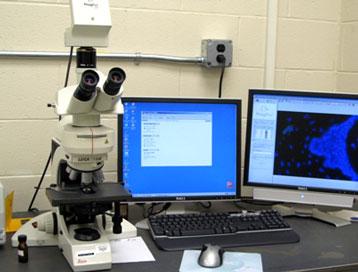 Leica DMLB Fluorescent Microscope with Jenoptik Digital Camera
